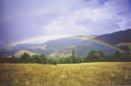 Rainbow over the Graham Downs Community in New Zealand